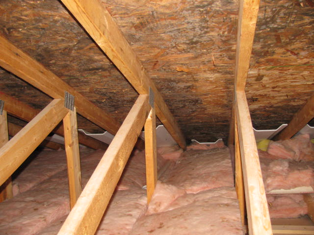 Mold Remediation Removal Attic Beverly Ma